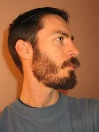 Haircut Styles Stylish With Brown Hair Handsome Men And Cool Expression Short Hairstyle Plain Background The Were Very Thin Moustache Beard Mens