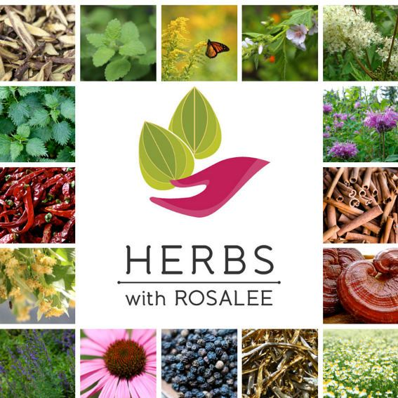 My vision for this website is to help people see there is an art to herbalism, that using herbs can be a lot more creative, fun and effective when used within a system of herbal theory.