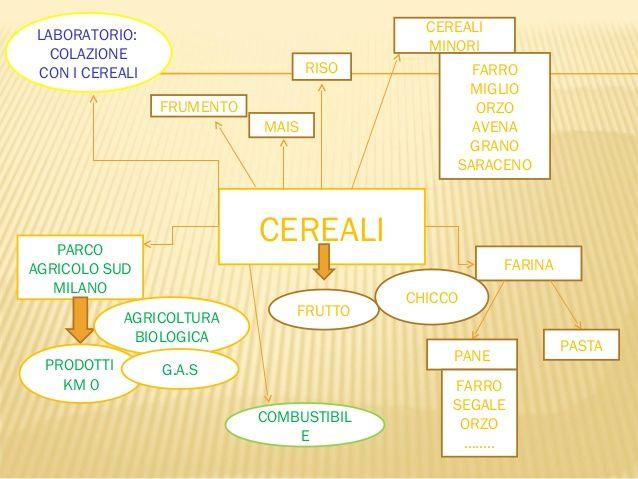 cereali-nel-parco-sud-di-milano-4-638.jpg (638×479)