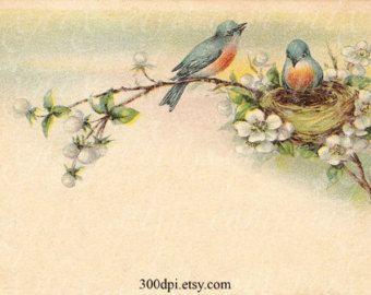 blauwe vogelnest - digitale vintage tags briefkaart scan afdrukbare beelden dank u kaart cadeau label hang label instant download