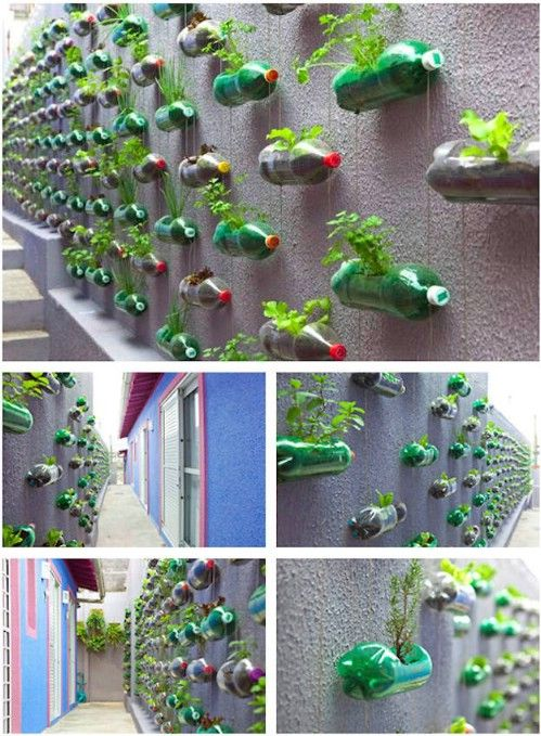 Plastic Bottle Vertical Herb Garden..so amazing and admiring