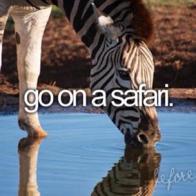 Go on a safari! I want too. :)