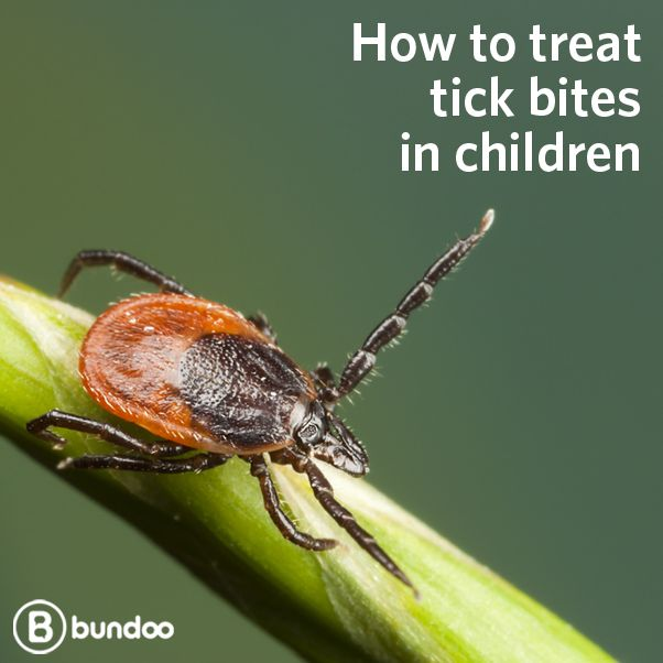 Most tick bites are harmless, but a small number can cause disease or infection. Learn more.