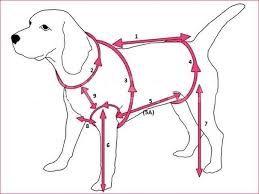 Αποτέλεσμα εικόνας για комбинезоны для собак выкройки