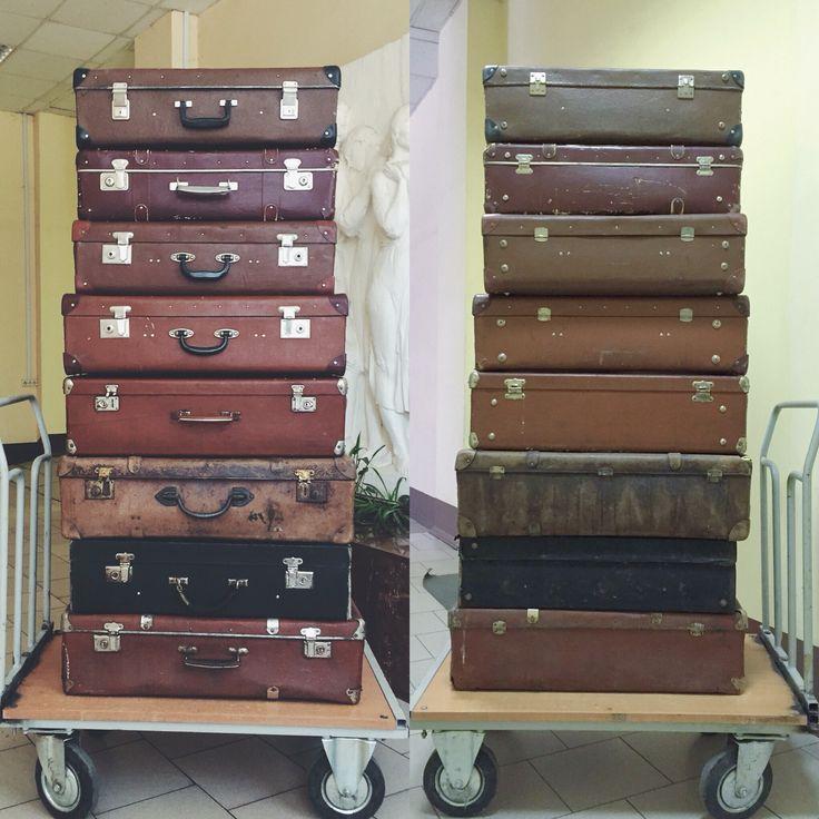 N hommage club чемоданы рюкзаки охотничьи fox