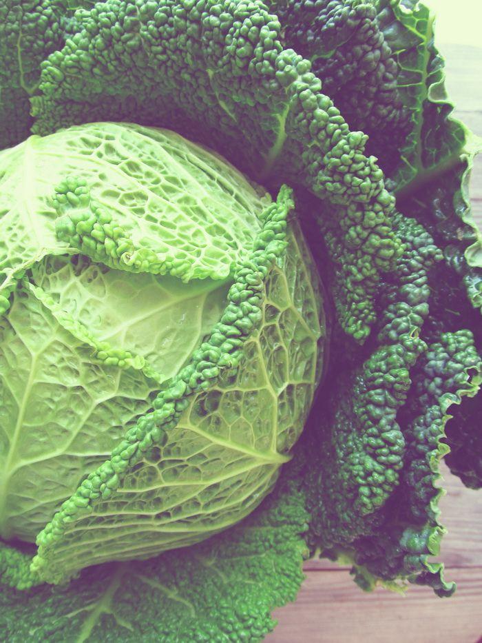 Savoy Cabbage!