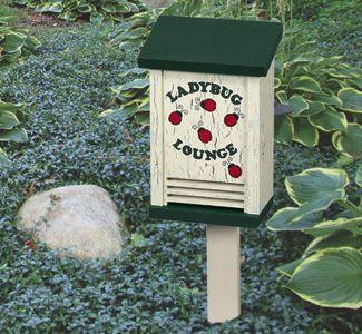 Ladybug House Woodcraft Pattern Project