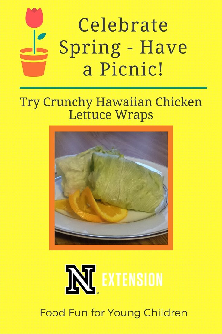 National Picnic Day is celebrated on April 23. Enjoy this day by having a picnic with a Crunchy Hawaiian Chicken Lettuce Wrap!