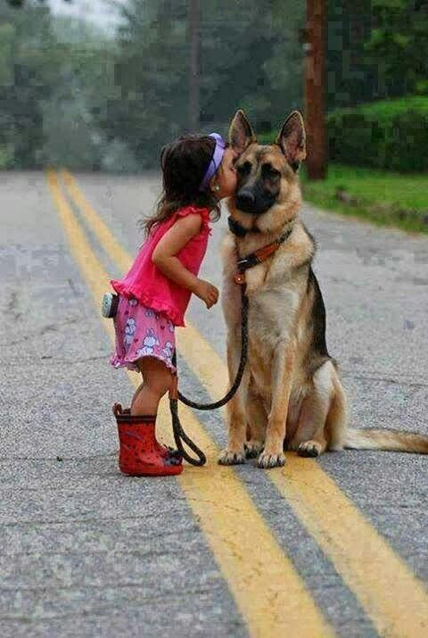 German shepherd shares some love! If Hooch is still around when I start popping out the kids, I want a photo like this!