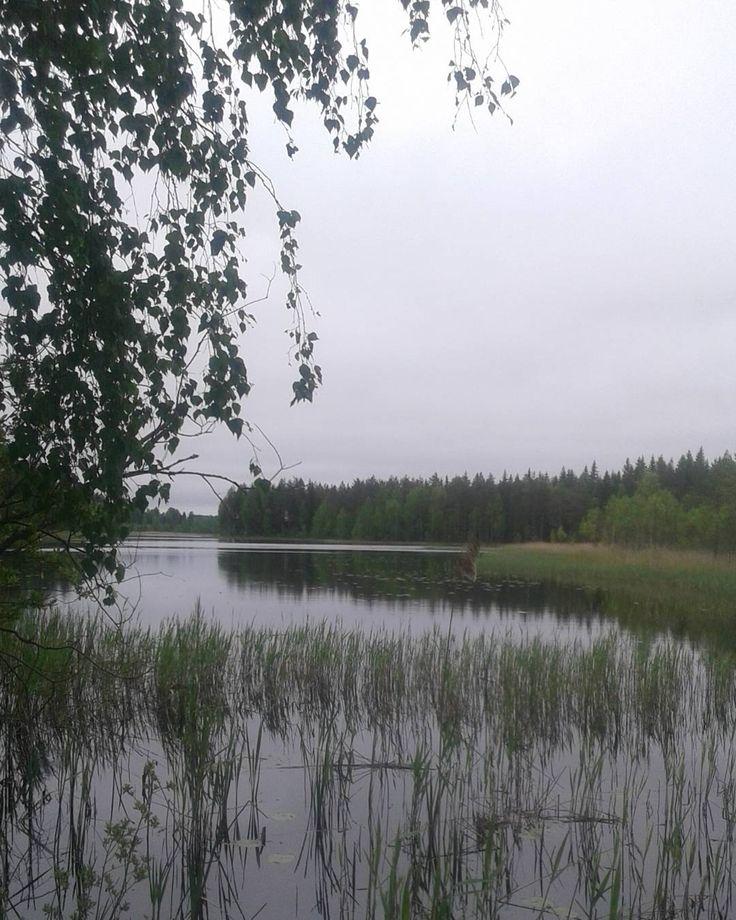 Peace of mindHave a great evening Mukavaa iltaa #calmlake#peaceful#finnishnature#tree#lakeview#silence#peacefulplace#peaceofmind#mothernature#naturelovers#natureshots#naturephotography#natureaddict#fiftyshades_of_nature#järvimaisema#järvi#tyynijärvi#rauhallista#mielilepää#suomenluonto#luontohetki#luontokuvaus#luonnossa by auliiii_