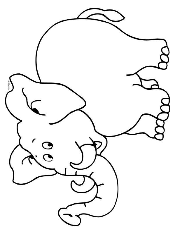 Kleurplaten Baby Olifantjes Idee 235 N Over Kleurpagina S
