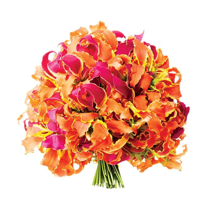 Brides.com: Colorful Wedding Bouquets. Tropical Pink and Orange Bouquet. Whether you're getting married in a tropical locale or channeling island style at your stateside venue, Gloriosa lilies in sunset shades make for a bold wedding bouquet.   Bouquet of Gloriosa lilies, $250, Noir Hanna International  See more rum punch cocktail-inspired wedding ideas.