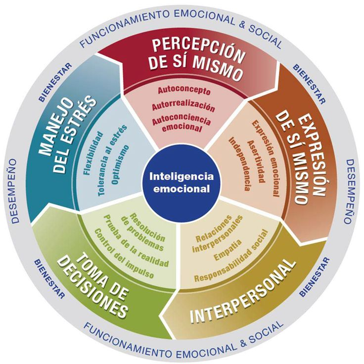 emotional intel The ruler model used in schools is an acronym for 5 emotional skills that are derived from the 4-branch model of ei but how does 5 equal 4 the answer is that the 4-branch model proposed a set of sub-skills for each of the 4 branches, at least 16 in all.