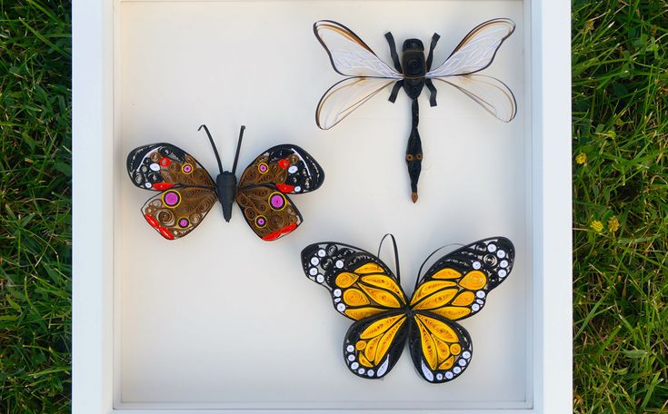 Reddit user greatdane4 has been experimenting with making quilled paper butterflies. She is new to the craft, but does an amazing job.