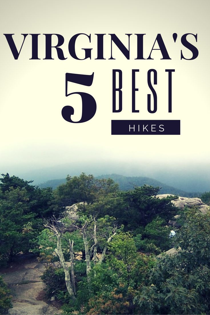 Virginia is a great place for hikers and outdoor enthusiasts. The best hikes in Virginia are many, but here are my top five.  Full article at http://thegirlandglobe.com/best-hikes-in-virginia/