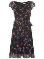 Womens **Billie & Blossom Tall Black Butterfly Print Skater Dress- Black