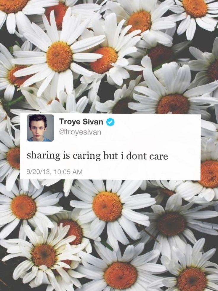 Troye Sivan >>>