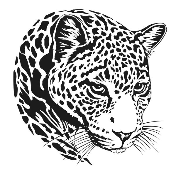 Download Jaguar Head Illustration Vector In Eps Format Head Jaguar Vector Animal And More Resources At Freedesignf Animal Stencil Big Cats Art Animal Drawings