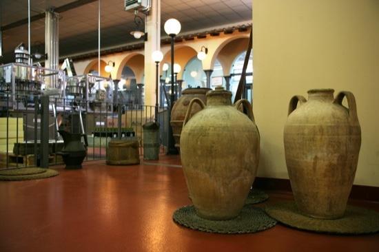 Museo dell'olio all'interno della Società Agricola Trevi il Frantoio