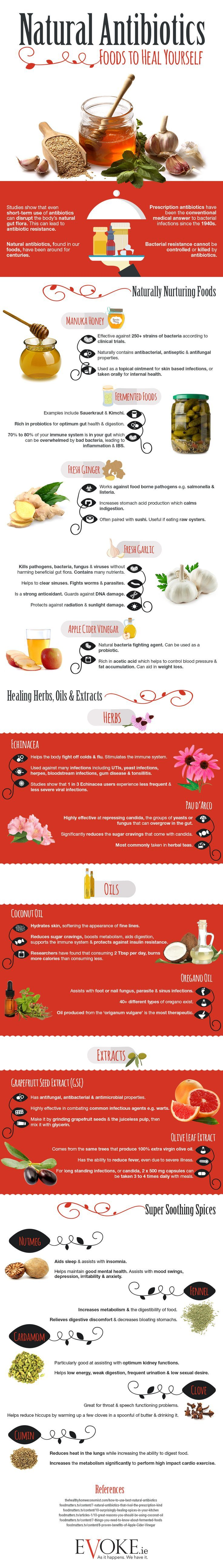 Natural Antibiotics: Foods to Heal Yourself – Infographic