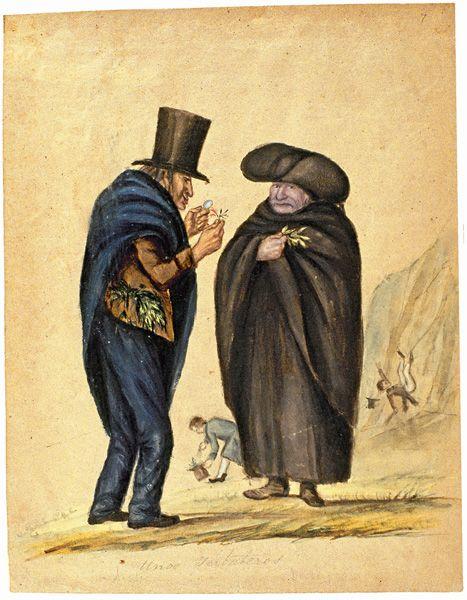 Unos yerbateros.Francisco Javier Matis y el  doctor Céspedes