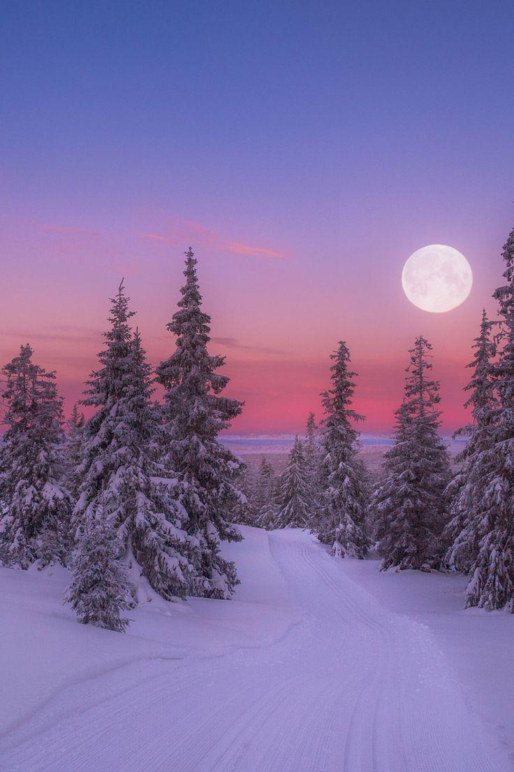 Beautiful Winter Outfit Www Pinterest Com: 25+ Beautiful Winter Scenes Ideas On Pinterest