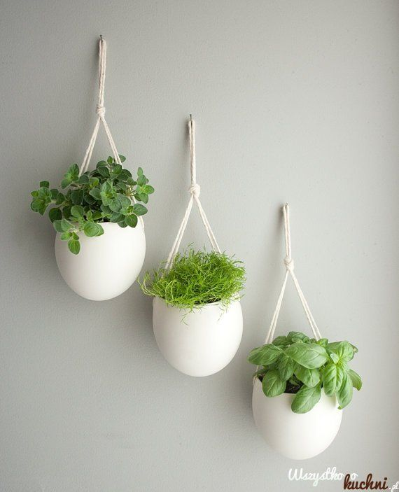 Zamiast+gracić+parapet+możesz+doniczki+z+ziołami+powiesić+na+ścianie...