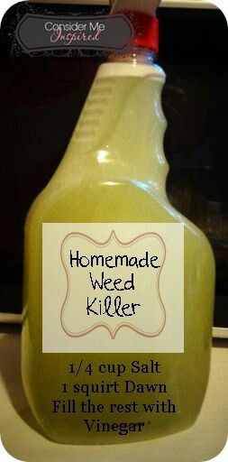 Weed killer- Vinegar, Salt and Dawn.  I made a batch of this today and within hours the weeds were dead.  It really worked.  I am thrilled, because it is cheap, natural and easy