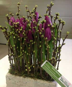bloemschikken winter - Google zoeken