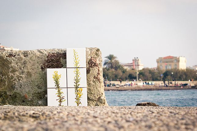 """""""Spontĕ the tile with a """"green"""" design, that makes you think"""" The idea behind sponte, is to used spontaneous plants to make think on what usually it is not useful. The tiles are a food for thoughts and not only a design object.  #sponte d'aMare  #tiles #ceramictiles #design #print #livorno #toscana #italy #madeinitaly #handcraft #piastrelle"""