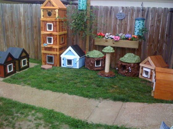 cat house outdoor feral cat house with cat in it would love this in the barn…                                                                                                                                                                                 More