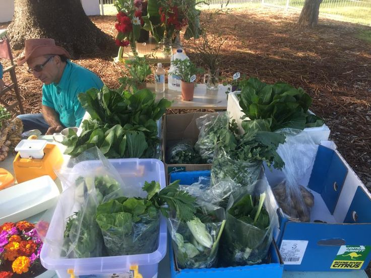 Every 1st and 3rdFriday of each month in the church grounds at the top of Hyde Street, which is the main street of Bellingen. Bello, Local, Organic, Produce…100% organic andhumane choice farmers market and café. For more information visit the market'sFacebook site.