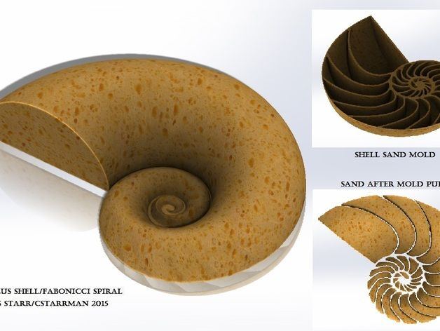 For this design, I wanted to present something unique from the standard castle build, but certainly represent mathematics. I chose to create a Nautilus shell sand mold, which represents the Fabonacci and or logarithmic spiral. Once printed, the mold can be filled with sand, and turned over onto the ground, and create a cool spiral visual. Make several at the beach and make an artistic expression!   I found a Nautilus shell image online, and traced the underside pattern, and sculpted the…