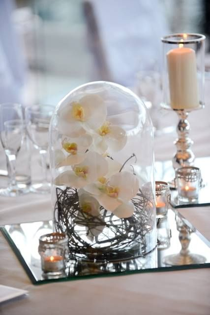 30cm Glass Dome Vine and Orchids displayed inside Mirror base and tea lights