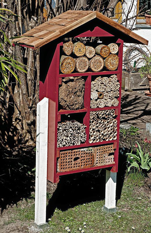 """Insect hotel"" it is not enough to pin this create an insect house - this spring, Bauen, Lake Lucern"