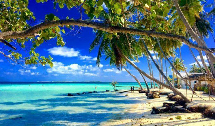 فنادق تايلاند بانكوك Nature Beach Maldives Nature