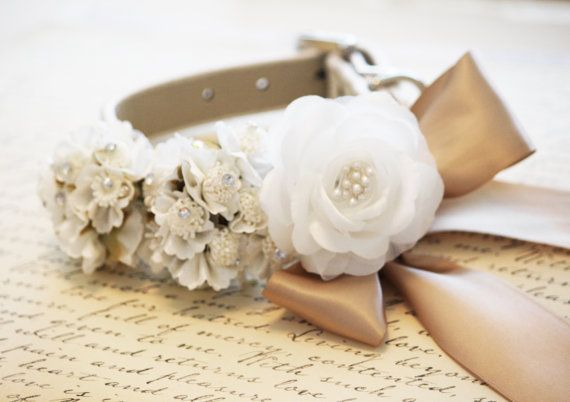 For Mickey : White Ivory Wedding Dog Collar by LADogStore, $43.50