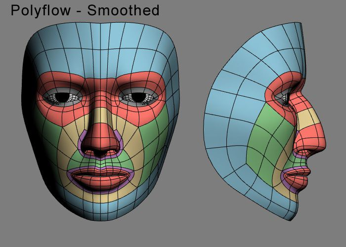 3D Human Face Wireframe Typologie 2 Face topology