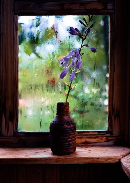 Геометрия окна, мягкий свет, фактура капель и цвет! Автор Наталья Евсеева