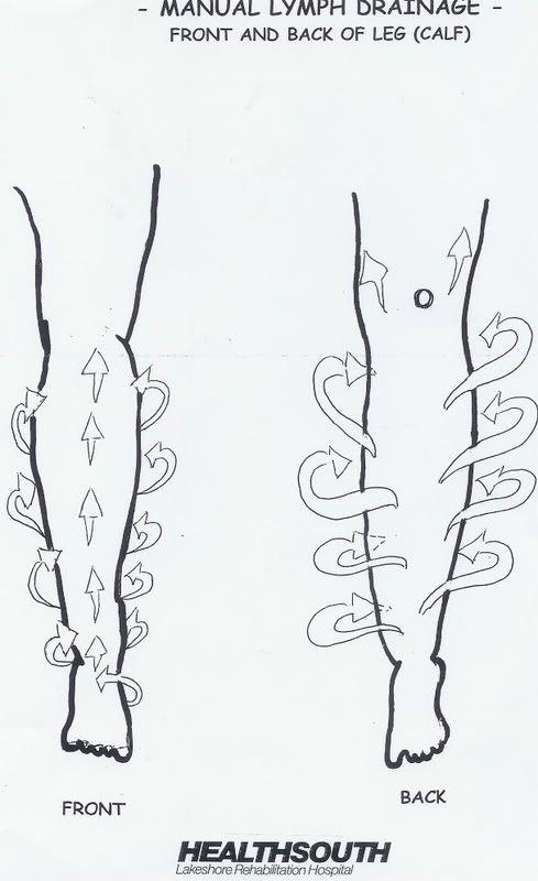 lymphedema drainage back | Manual Lymph Drainage Leg Illustrated Patterns | Lymphedemaville