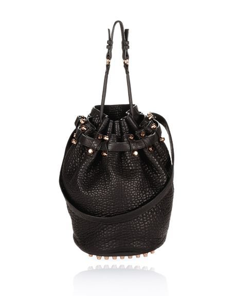 One of my fave classic Alexander Wang bags