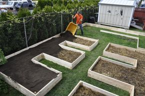 Adding a layer of soil to the lasagna garden. I love this layout!