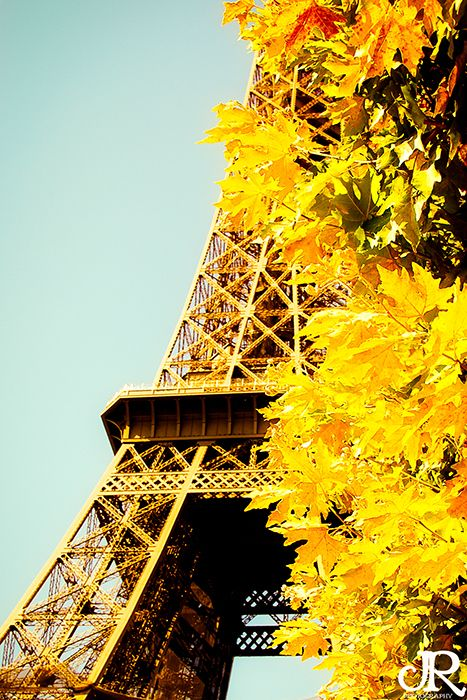 Autumn GoldEiffel Towers, Beautiful Places, Autumn Gold, Autumn In Paris, France, Travel, Yellow, Fabulous Fall, Gold Paris