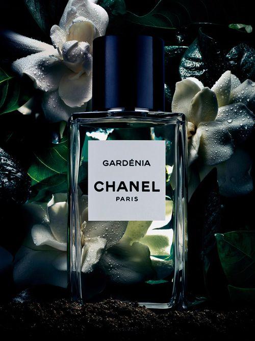 Gardénia  Chanel