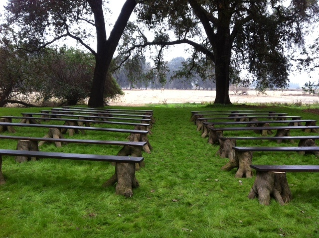 Jennifer Elliot S Benches For Ceremony Handmade From Stumps Of Peach Trees