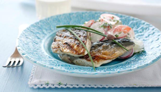 Ønsker du deg en smak av sommer? Prøv makrellfilet på grillen med en frisk og smakfull sommersalat med tomater, reddik, og gressløk.