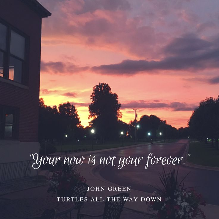 """Your now is not your forever."" Turtles All the Way Down quote by John Green #quote #johngreen #turtles"