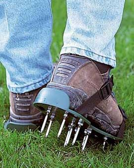 How much effort in lawn care?  This is pretty clever... I might end up aerating my yard this way?!