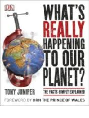 A review the current state of the planet and human impact.