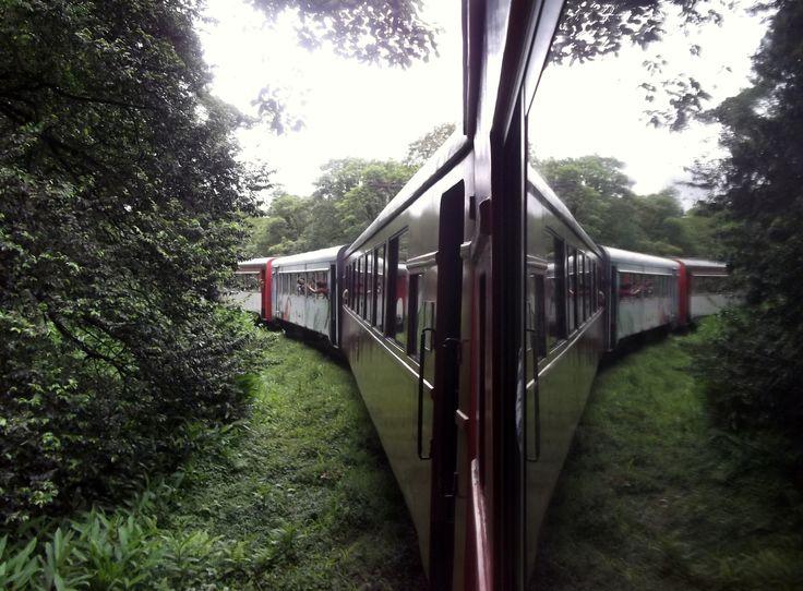 Passeio de trem Curitiba - Morretes Curitiba - PR - Brasil